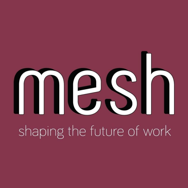mesh LLC- skills & services marketplace